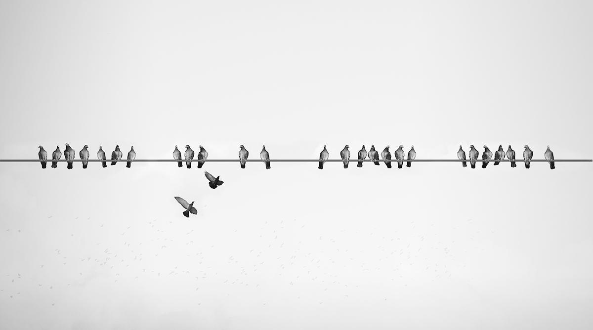 Measuring Your Digital Signage Network: Aligning Disparate Teams